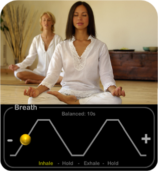 Heart Rate Plus Guided Breathing Sessions